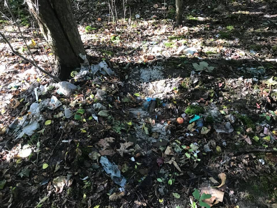 Zaśmiecona część zieleni miejskiej, którą zdecydowano się zająć w ramach akcji. (fot. materiały prasowe)
