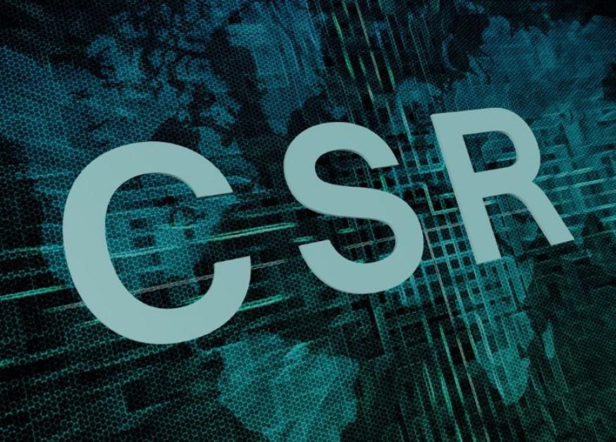 CSR stał się kierunkiem, w którym działające w Polsce firmy zaczęły podążać (Fot. Shutterstock)