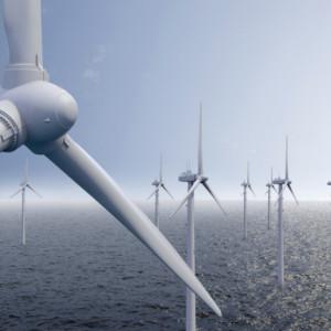 Powstał nowy kierunek studiów: morska energetyka wiatrowa