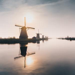 Do Holandii napływa coraz więcej imigrantów z Mołdawii