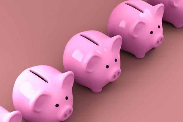 Pracownicze Plany Kapitałowe zostaną wpisane do konstytucji