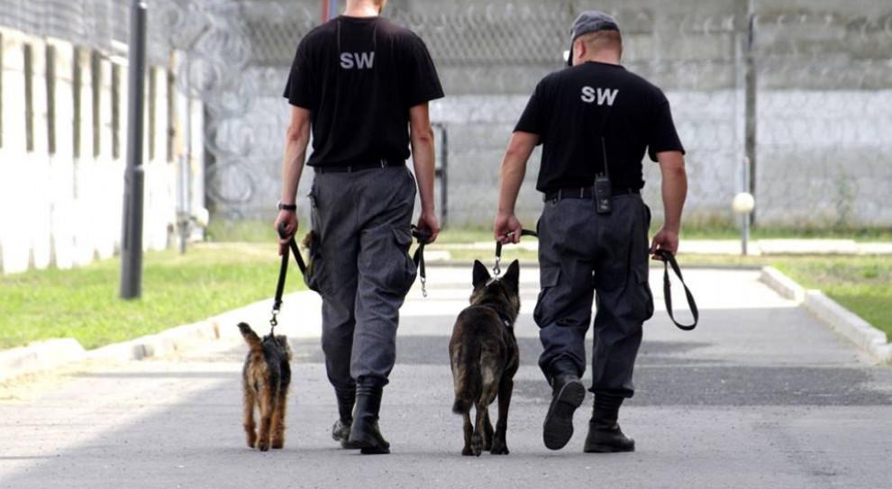 Służba Więzienna wszczęła kontrolę po zatrzymaniu jednego z pracowników