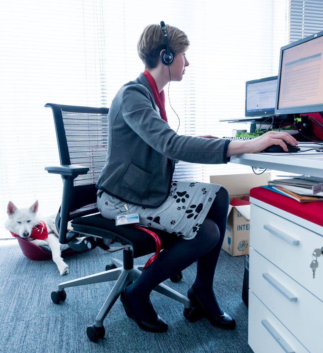 Pies przychodzący do biura musi mieć w nim swoje miejsce. (Fot. Nestle Purina)