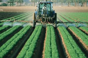 Trzynasta emerytura także dla rolników