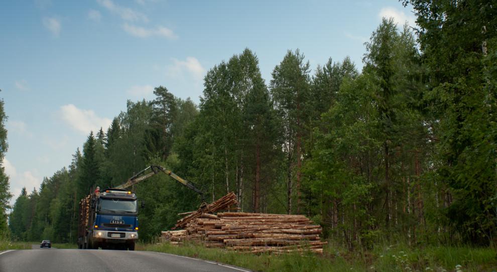 Finlandia: Trzy tygodnie strajków w przemyśle papierniczym i drzewnym