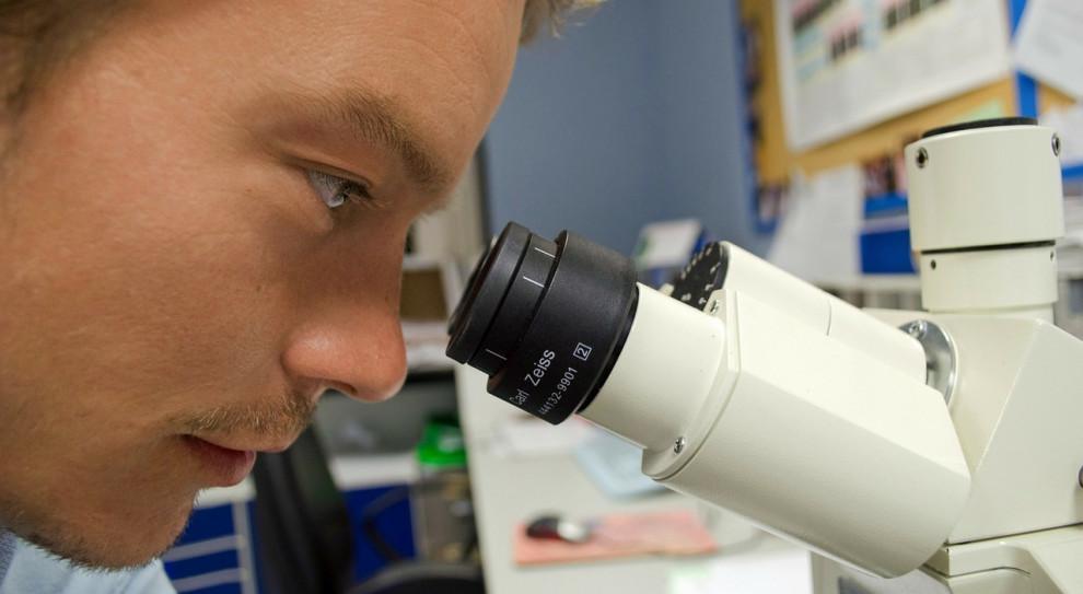 Praktycy z branży biotechnologii wesprą uniwersytecką pomologię