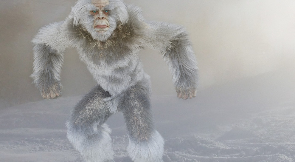 W Indiach Yeti ochrania lotnisko przed małpami
