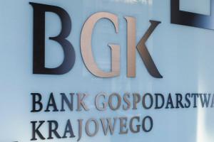 BGK wesprze polskich przedsiębiorców. Powstaje pakiet pomocowy dla firm