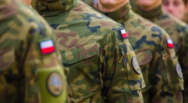 Rośnie liczba zawodowych żołnierzy