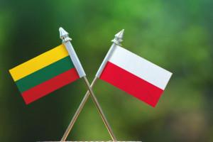Litwa od 11 maja otwiera granicę dla Polaków jadących do pracy