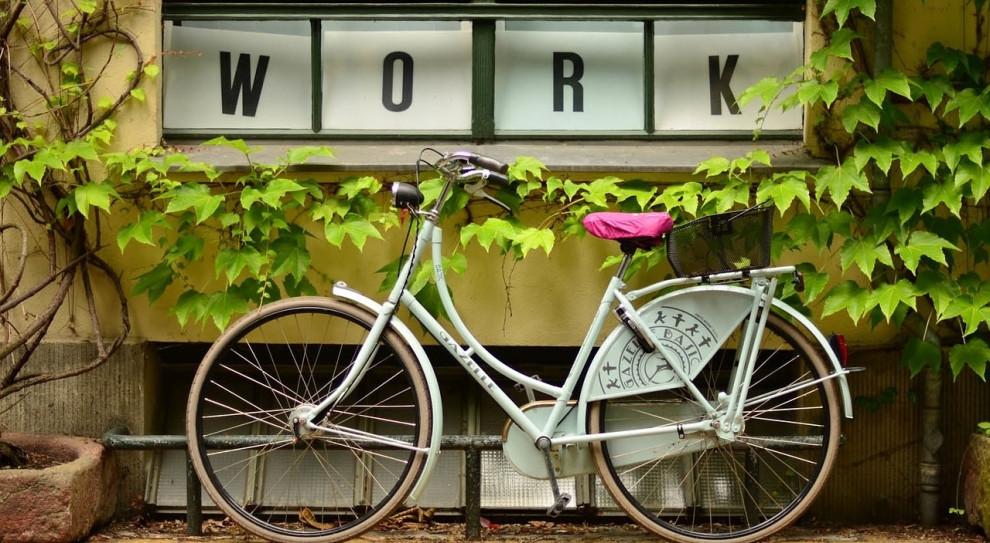 Rowery dla pracowników Zarządu Komunalnych Zasobów Lokalowych