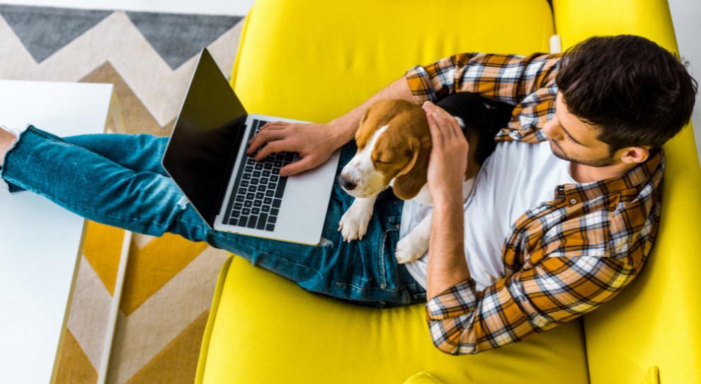 Praca zdalna burzy work-life balance