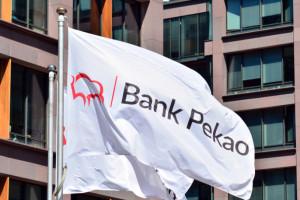 Pekao wprowadzi do oferty program dopłat BGK dla firm dotkniętych koronawirusem