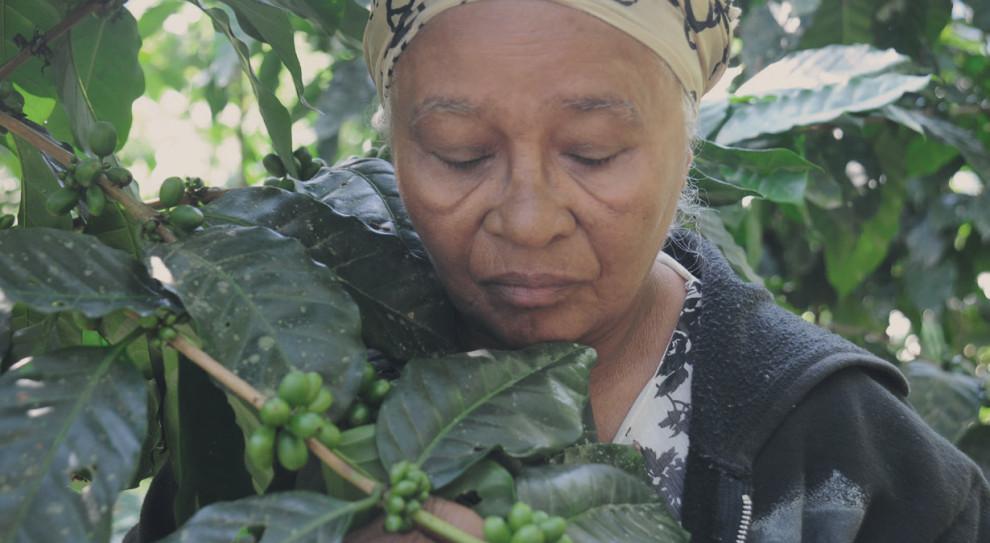 Ponad 32 miliony kobiet pracuje na świecie przy produkcji kawy. Polacy mogą im pomóc
