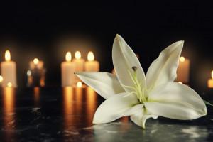 Start-up umożliwiający planowanie pogrzebu online zebrał miliony