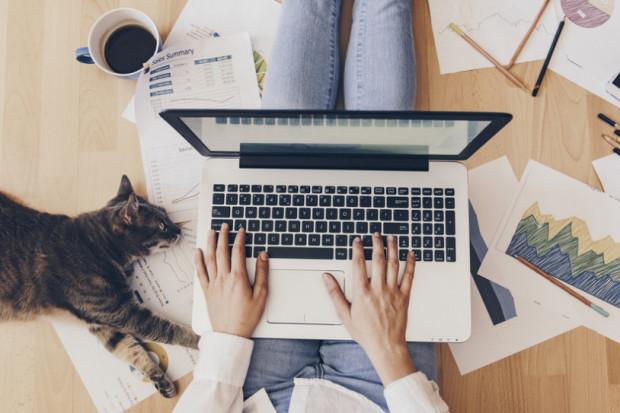 Poznaj pięć filarów efektywnej pracy zdalnej