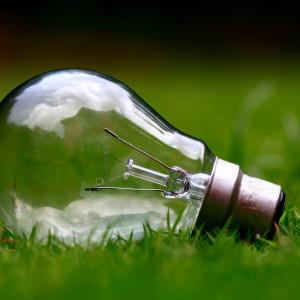 Coraz więcej firm stawia na zieloną energię