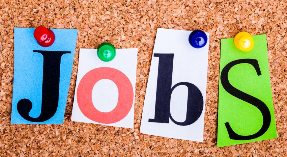 Lipcowy niewielki spadek liczby internetowych ofert pracy obserwowaliśmy we wszystkich województwach. (Fot. Shutterstock)