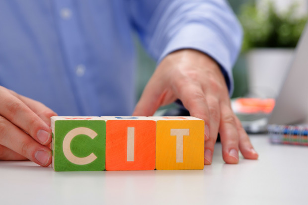 MF: Estoński CIT może zmniejszyć wpływy z podatków o 5 mld zł