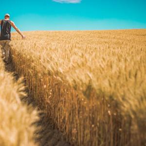 Wzrosły dochody rolników