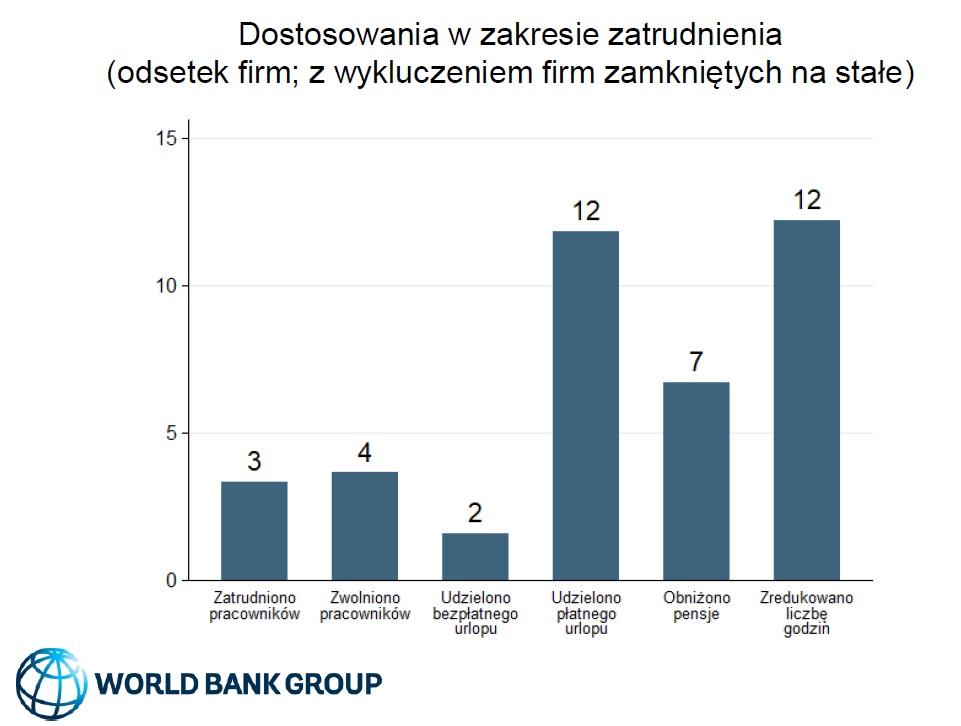 Dostosowania w zakresie zatrudnienia (Źródło: COVID-19 Business Pulse Survey - Polska)