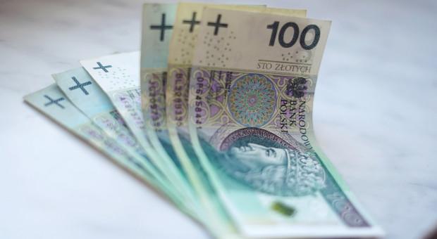 Pandemia a długi Polaków. Większa kwota, mniej dłużników