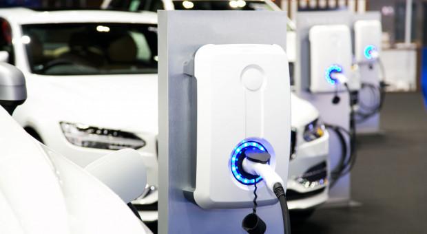 Firmy szukają speców od elektromobilności. Popyt wzrósł o 200 proc.