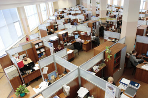 RPO do pracodawców na czas kryzysu: teraz ważna jest równość i różnorodność