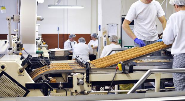 Pracujący w gospodarce narodowej pod lupą GUS