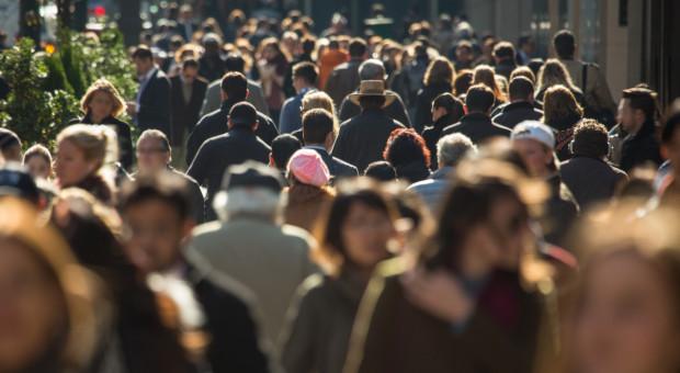 Rynek pracy w trzecim kwartale. Odbicie po wiosennym dołku