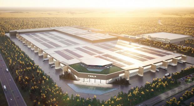 Tesla szuka pracowników do niemieckiej fabryki. Język polski atutem