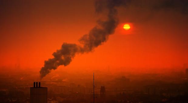 Pracownicy korporacji będą prowadzić szkolenia o smogu