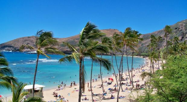 Hawaje kuszą pracowników zdalnych. Zwrócą pieniądze za lot na wyspę