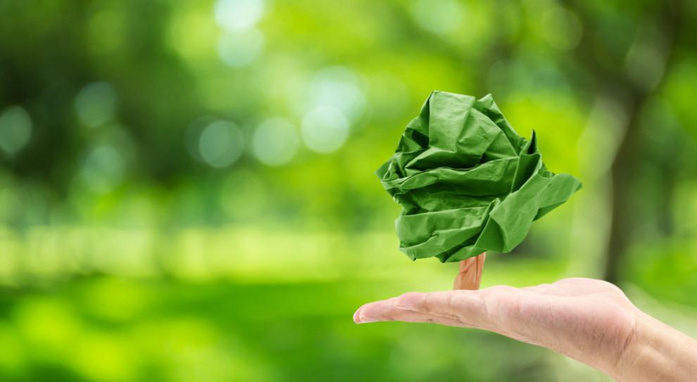 """Firmy nie inwestują w """"zielone"""" technologie. Blokuje je brak wiedzy"""