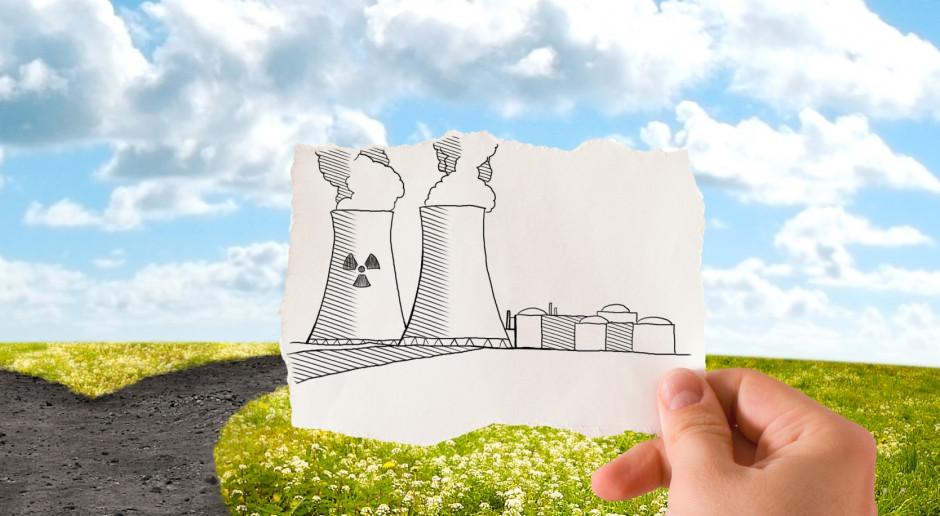 Przedsiębiorstwa planują inwestycje m.in. w OZE, elektryfikację, fotowoltaikę, magazyny energii, energię z wodoru czy pompy ciepła (Fot. Shutterstock)