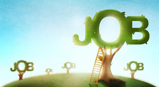 Pięć najważniejszych trendów na rynku pracy w 2021 roku