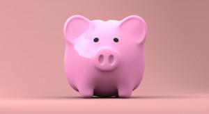 Jak zarabiają fundusze PPK? [RANKING]
