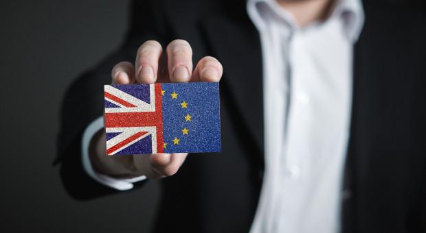 Niedużak: Skutki brexitu zależą od dostosowania się przedsiębiorców do nowych wymogów