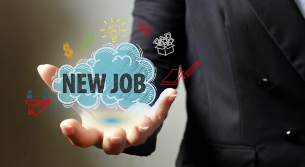 Firmy z sekcji przetwórstwa przemysłowego chcą zatrudniać