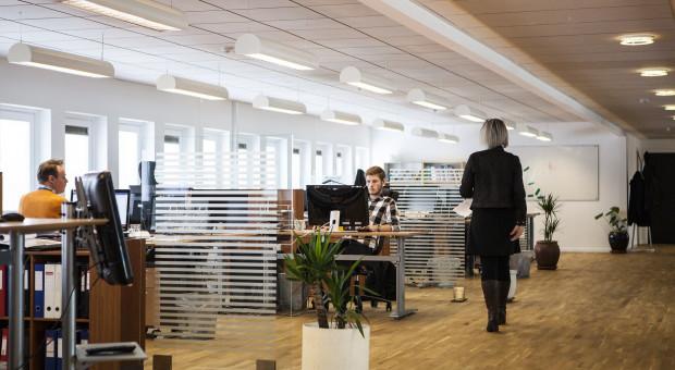 Branża IT coraz chętniej korzysta z elastycznych biur