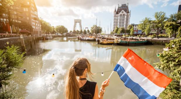 Praca w Holandii. Coraz więcej Polaków wyjeżdża tam za pracą
