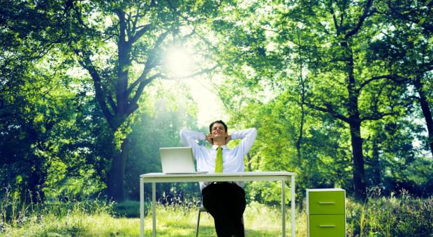 Bycie eko pomaga w rekrutacji pracowników. 4 na 10 osób zwraca na to uwagę
