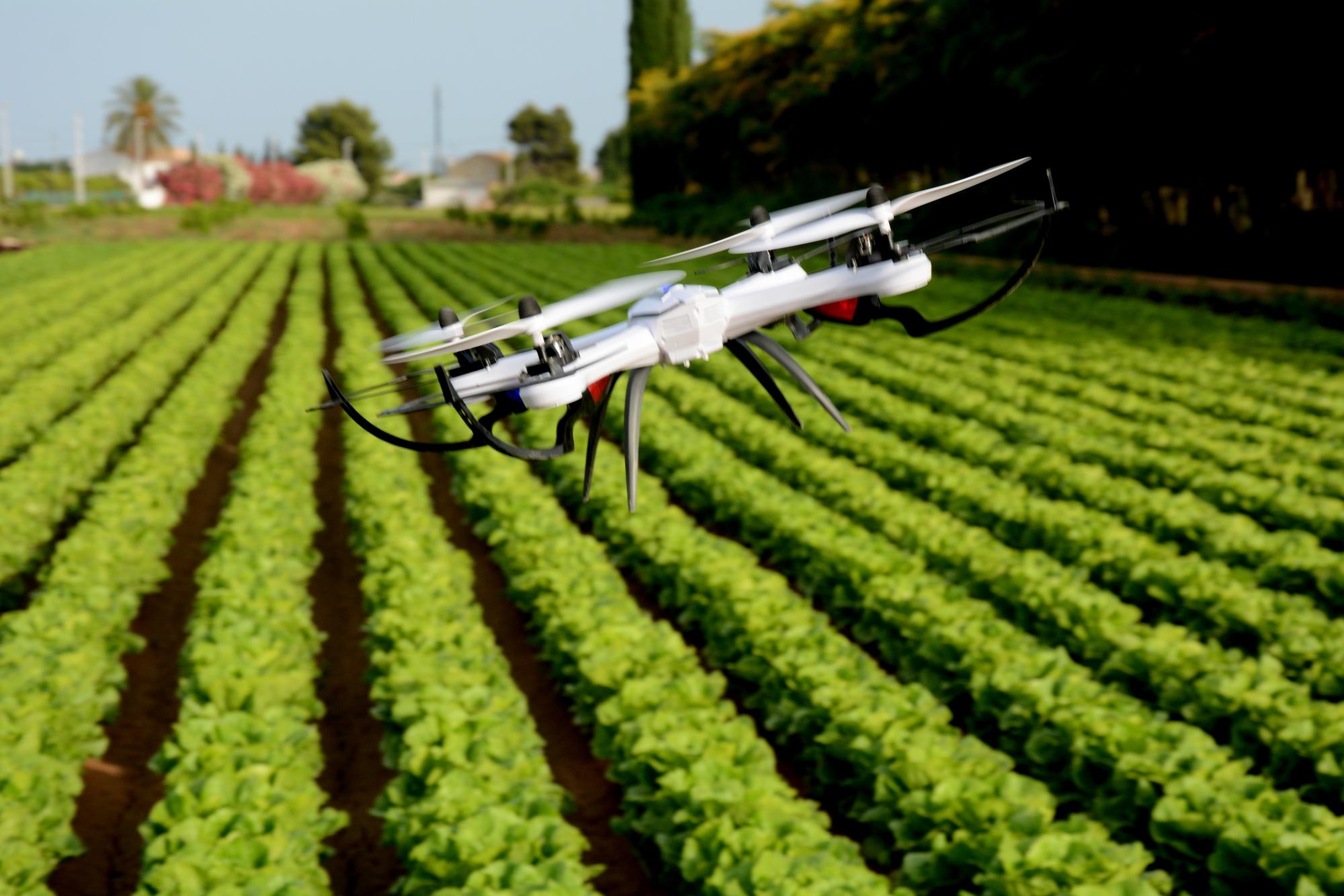 Bayer dostarcza innowacje, które pomagają rolnikom rozwijać działalność w bardziej zrównoważony i odpowiedzialny sposób (Fot. Mat. pras.)