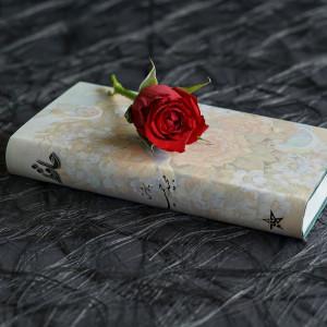 Stypendia dla poetów i tłumaczy wierszy