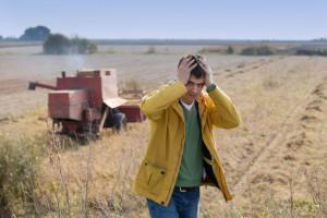 Co w rolnictwie się opłaca? Rolnicy odpowiadają