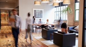 Biura typu flex. Polska regionalnym liderem elastycznej przestrzeni do pracy