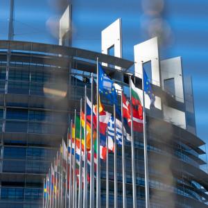 Przez to polskie firmy nie mogą sprawnie działać w UE