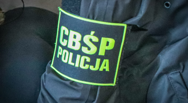 Podszywała się pod agenta CBŚP. Policjanci pokrzyżowali jej plany