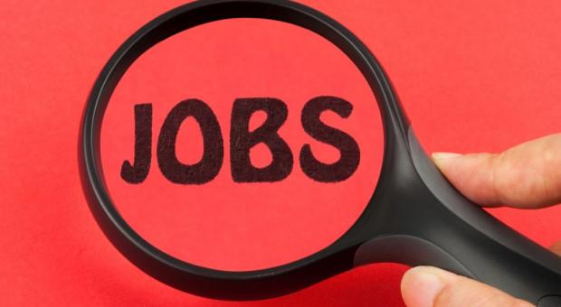 Pracodawcy rekrutują na potęgę. Rekordowa liczba ofert pracy