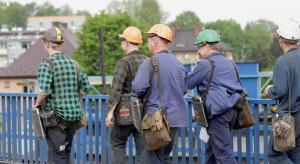 Tysiące górników do przebranżowienia. Duże szanse mają w trzech sektorach